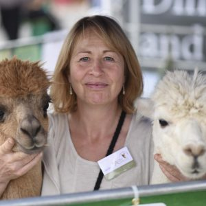 alpaca training advice